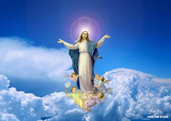Tại Sao Gọi Đức Mẹ Là Sao Mai?